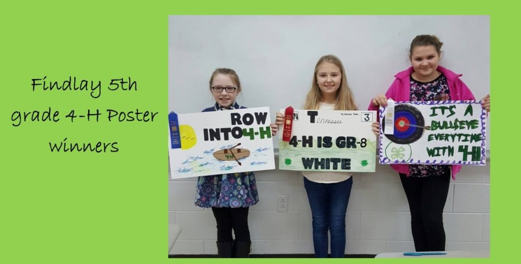 5th Grade 4-H Poster winners posing with thier posters